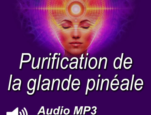 Purification de la glande pinéale